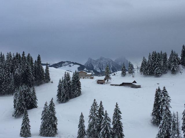 Halsegg-Winter